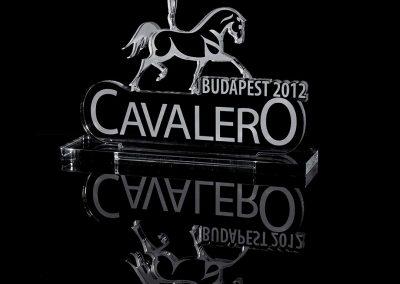 gravure-et-decoupelaser-trophee-PMMA-PLEXI-cavalero-2012-2